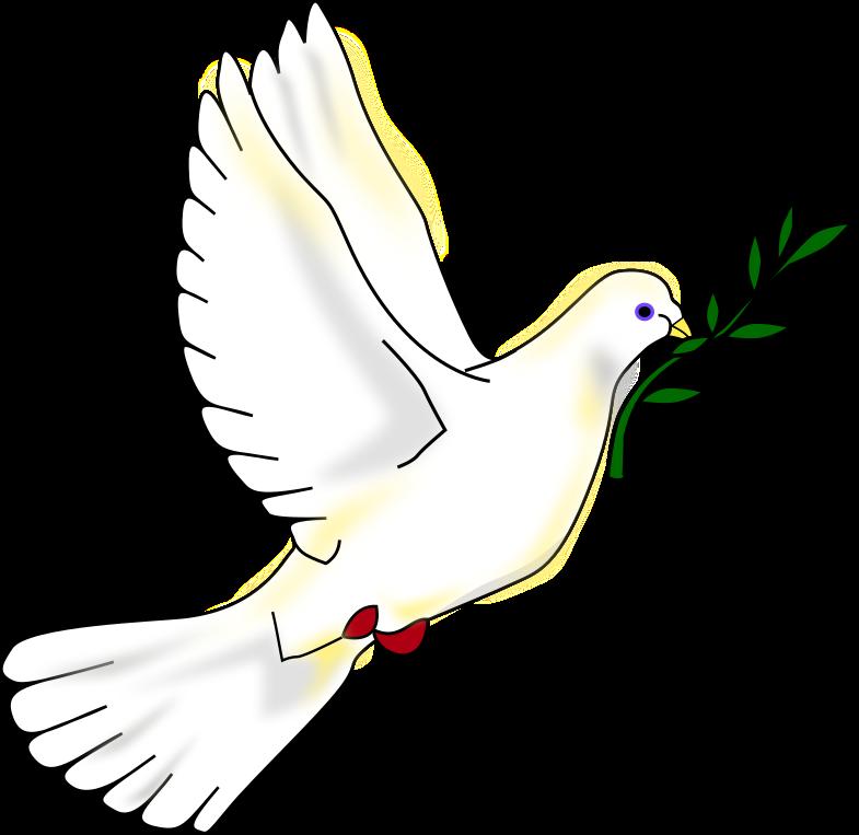 1 de Janeiro, Pomba da Paz