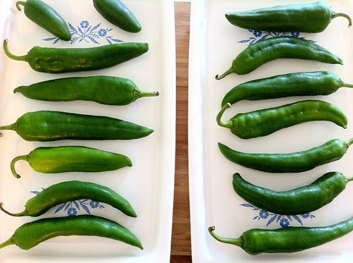 Chiles Spaced Evenly on 2 CorningWare Broiler Trays