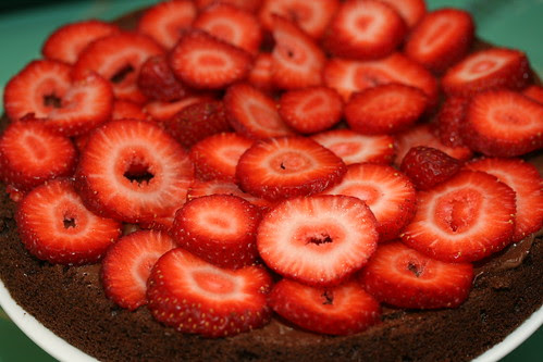 Food Librarian - Chocolate Sponge Cake (Donna Hay)