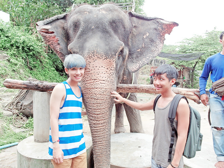 phuket elephant riding typicalben 12