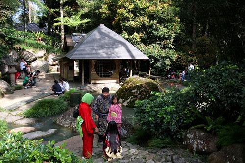 Japanese Garden 10