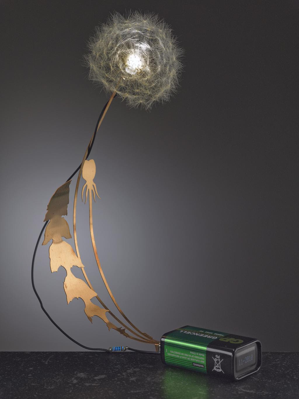Studio Drift: Dandelight  Materials:phosphor Brons, real Dandelion, and LEDDandelightis a little luminous dandelion. This little piece of real nature lightens up by batteryfood. The real dandelion seeds are one by one connected to the L.E.D.