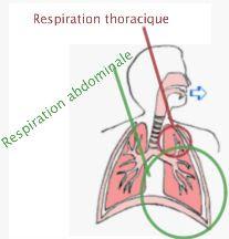 Réduire l'angoisse de 50% grâce à la respiration ...