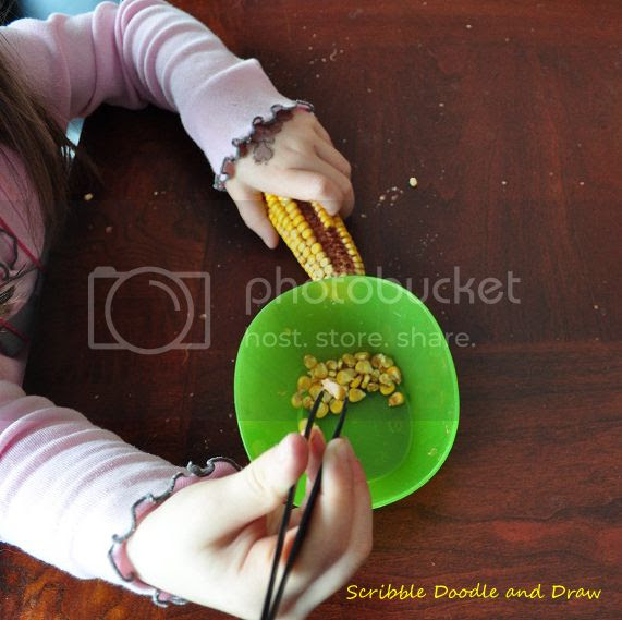 use tweezers to pick out dried corn kernels for fall fine motor fun