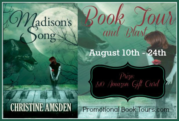 madison's song tour banner