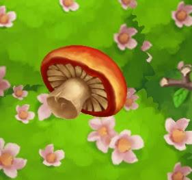 The Fussy Teacup Pig - FarmVille 2