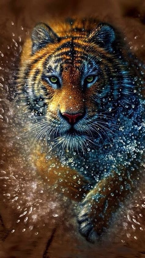 tiger iphone wallpaper background iphone wallpaper