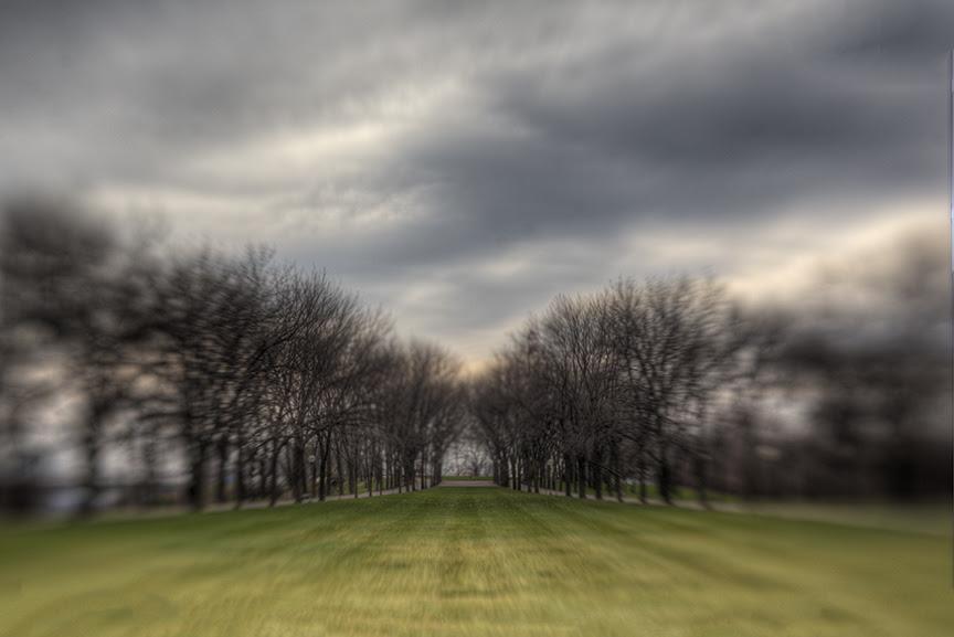 South Lawn