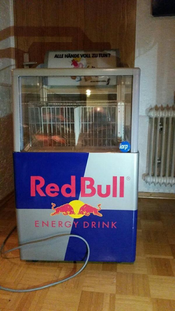 red bull k hlschrank ersatzteile edwards sarah blog. Black Bedroom Furniture Sets. Home Design Ideas