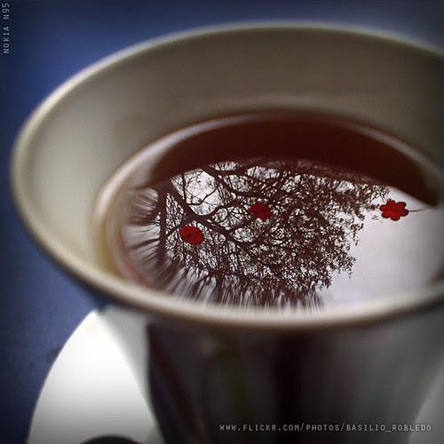 Un té, después de almuerzo por Basilio Robledo