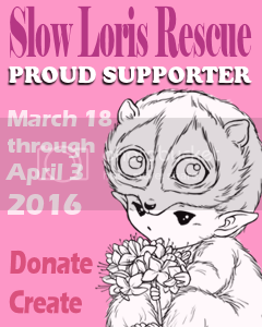 Friends of AuroraWings Supporting Slow Loris Rescue