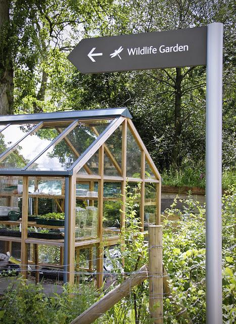 Wildlife Garden - Natural History Museum