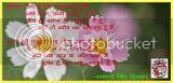 चोट  [कविता]- नीतू सिंह 'रेणुका'