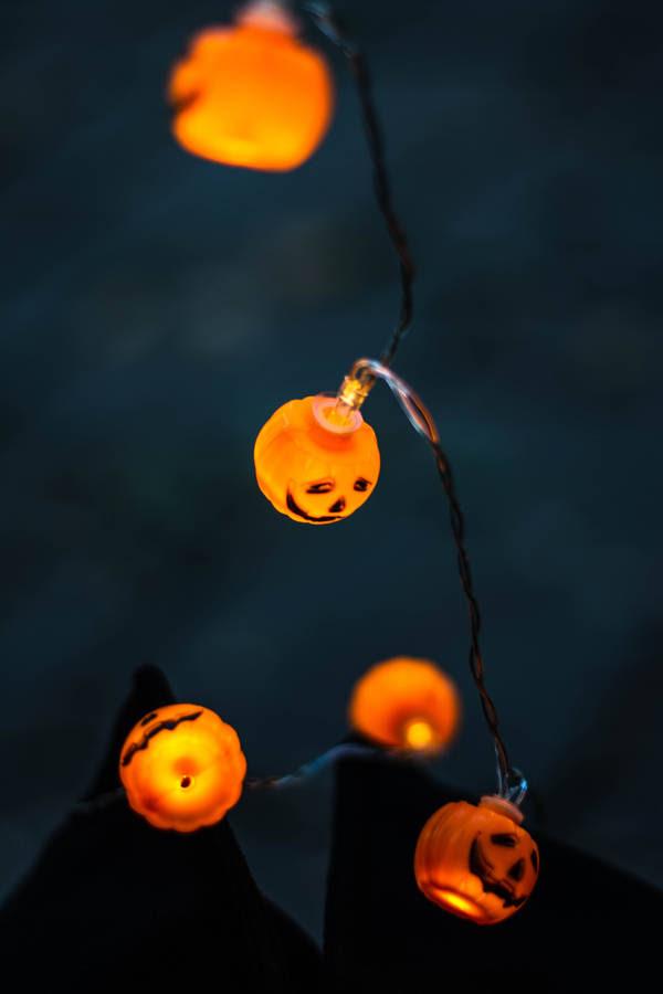 Happy Halloweenies Dachshund Dogs Halloween Alice Queen of Hearts Catapillar, painting by SM Violano