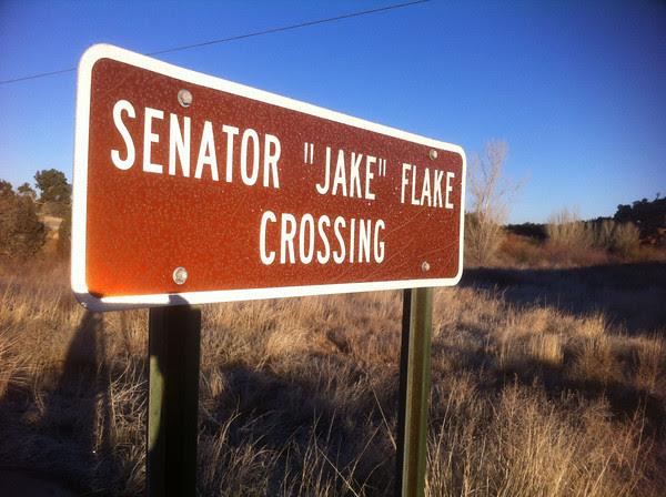 Jake Flake