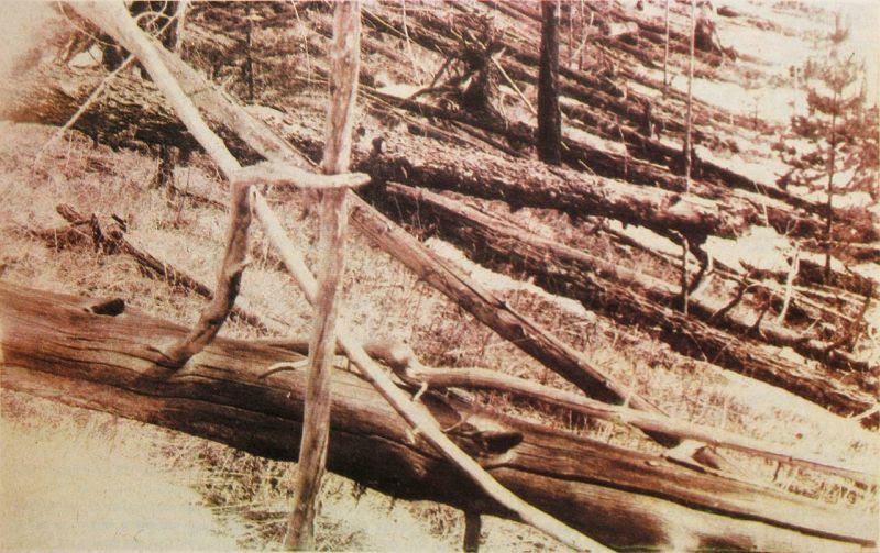 Imagen tomada en la expedición de Kulik en 1929