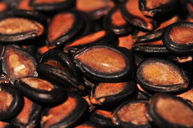 lifebuzz-d332e570fa9fe5fd45ff9e25876d669c-limit_2000