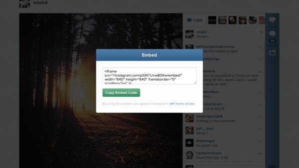 إنستاجرام تتيح إدراج الصور والفيديو في صفحات الويب