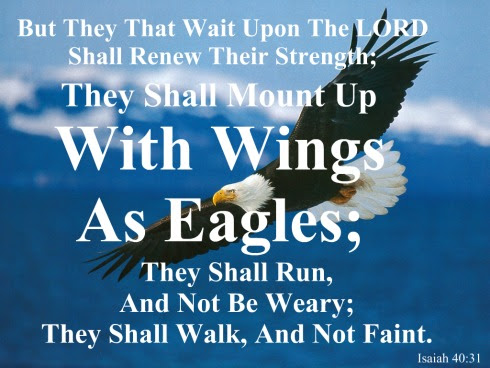 Quotes About Eagles Wings 51 Quotes