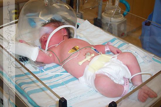 birth-4-wm