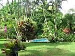 Tropical Dream Trek 7 Days | Kindred Spirits