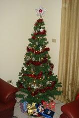 My Christmas Tree 2006