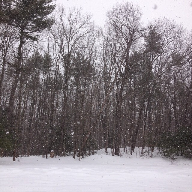 More snow! Pfffft.