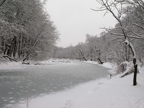 Frozen NW Branch