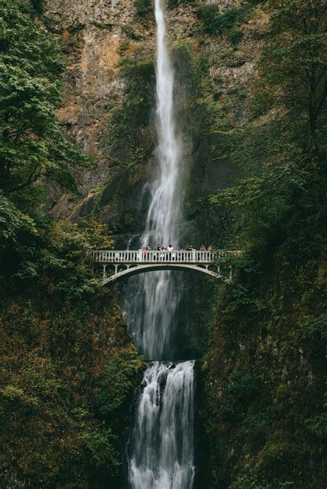 Portland Oregon Photography ? Matt Stallone Wedding