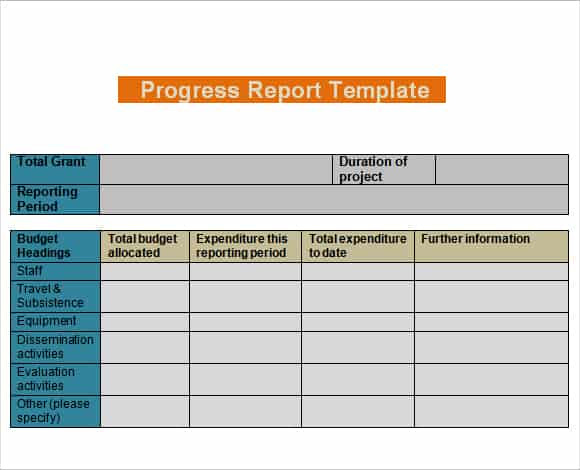 Daily Progress Report Templates - Writing Word Excel Format
