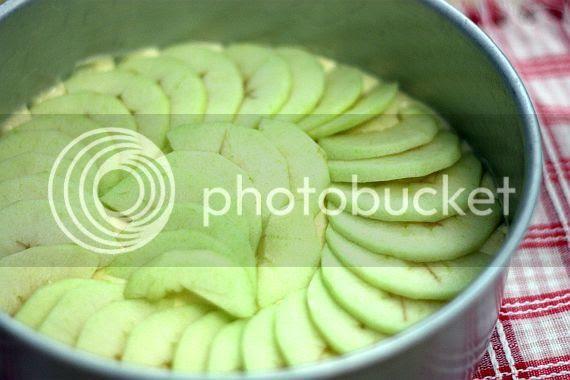 Moist apple cake 1