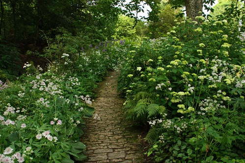Hydrangea Walk at Hidcote