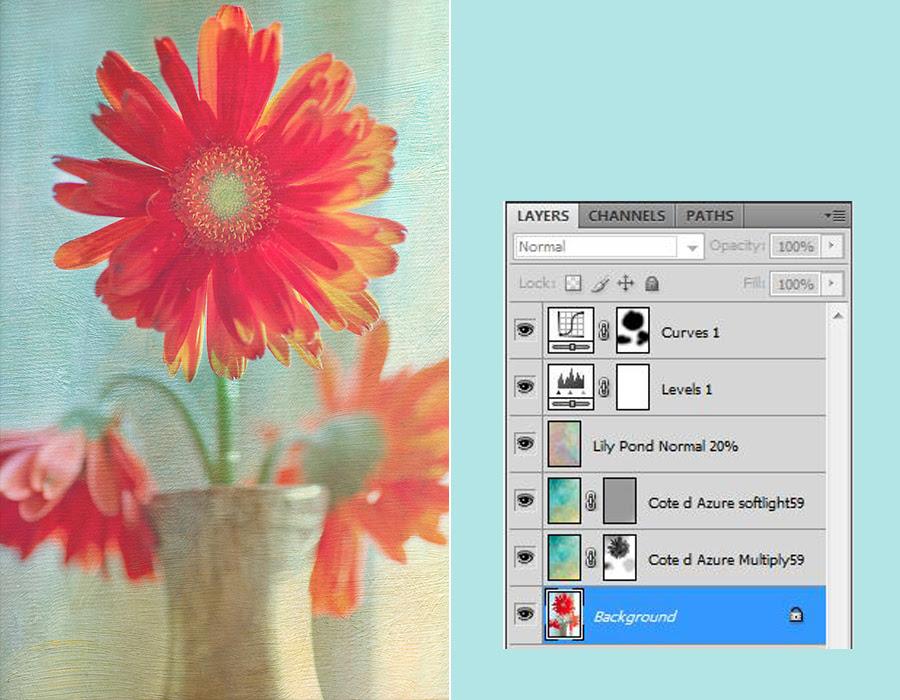 Flower Texture 2