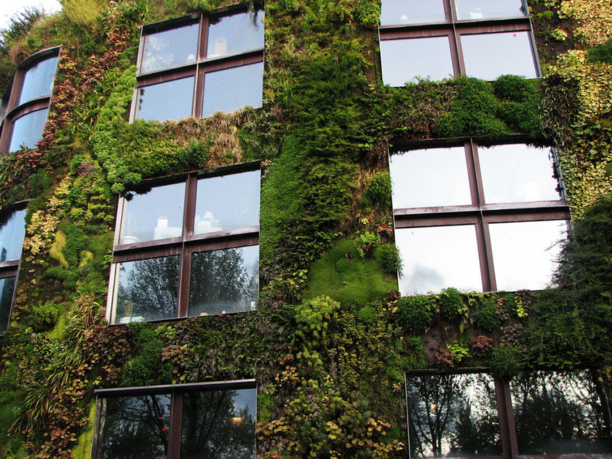 green-design-ideas-inspired-by-nature-41