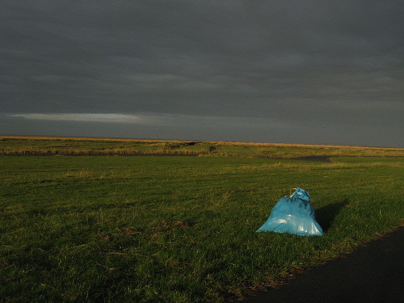 File:Wesselburenerkoog strandgut.JPG