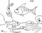 Güvenli Deniz Canlıları Oyunu Oyna