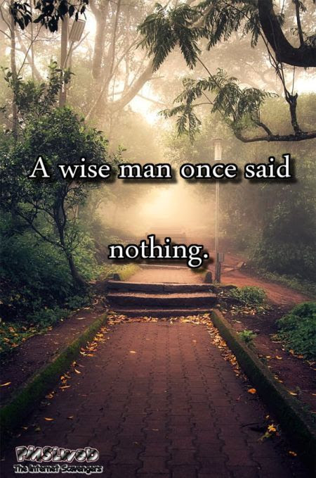 Once A Wise Man Said Nothing Funny Sarcastic Quote Pmslweb
