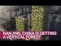 Nanjing Vertical Forest, una ciudad vertical de arboles para producir oxigeno