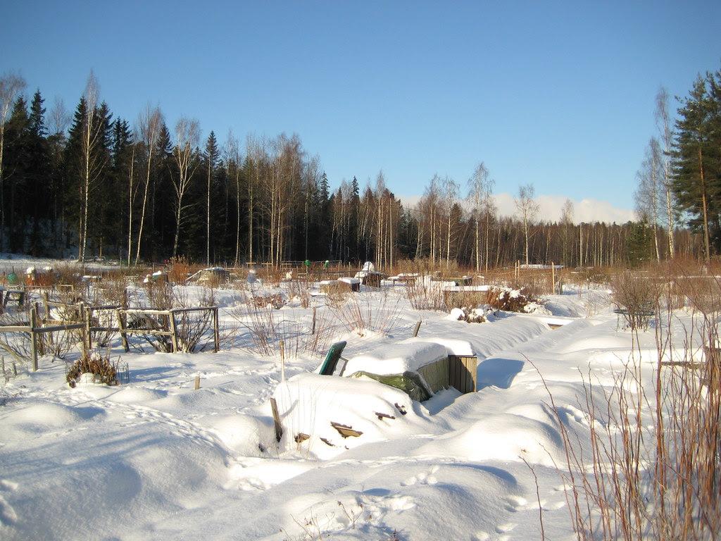 Huertas de verano en invierno