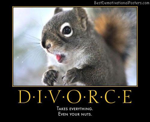 Divorce Takes Everything Demotivational Poster