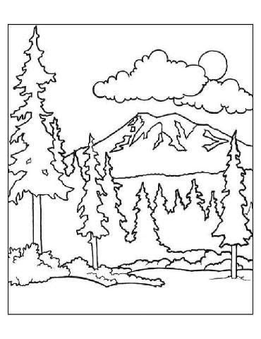 coloring pages coloring  forests  pinterest