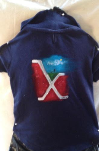 """""""Zoe's Dream"""" a jacket for Zoe"""
