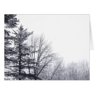 Snow-covered Trees: Horizontal Large Greeting Card
