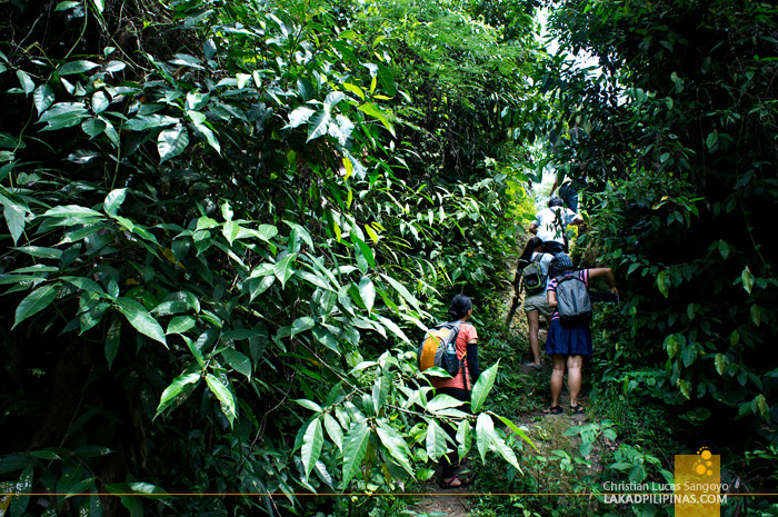 The Hike to Dalipuga Falls in Iligan City