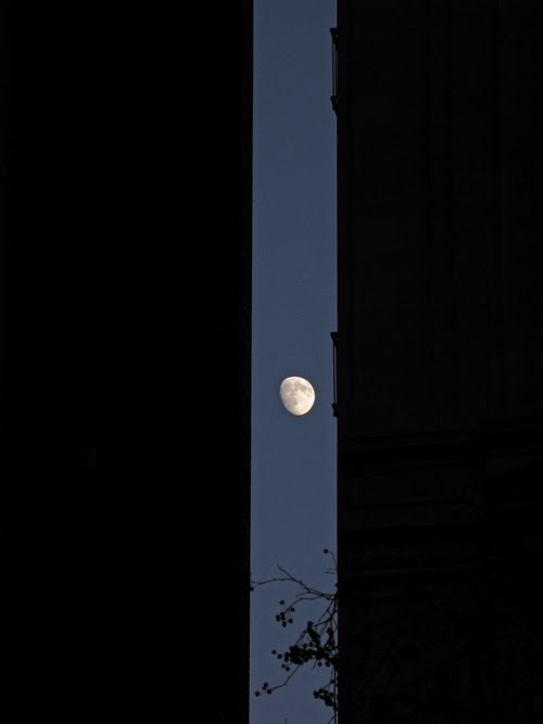 the moon between two Manhattan buildings, NYC