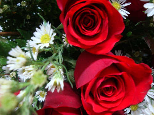 Feliz (e apaixonada!) Quinta Flower! by Menina Prendada -