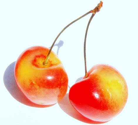 Rainier Cherries - The Absolute Best Cherries in the World