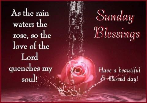 Sunday Blessings Have A Beautiful Blessed Day Pictures Photos And