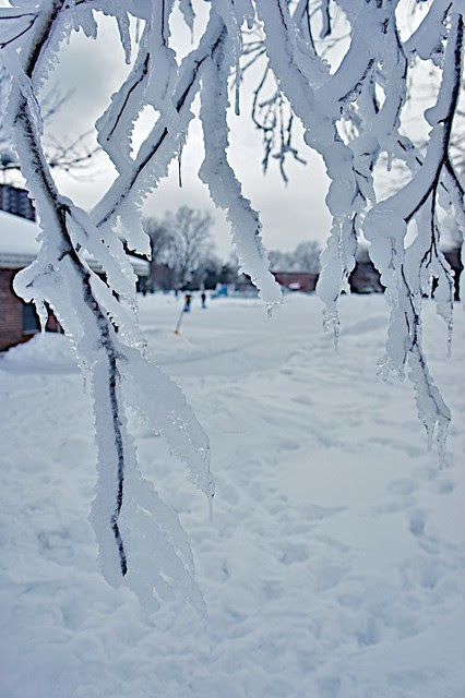 anteketborka.blogspot.com, hiver11