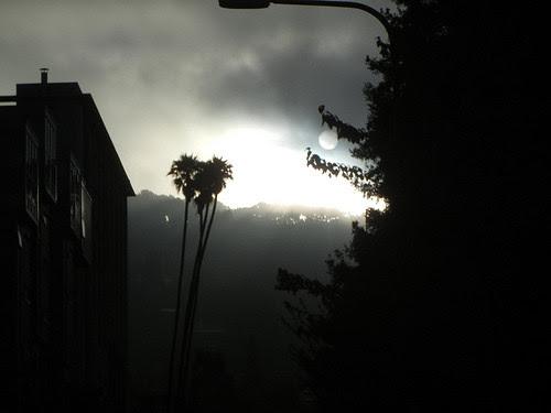 DSCN9199 _ Fog & Sun, Berkeley, CA